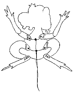 hampelback